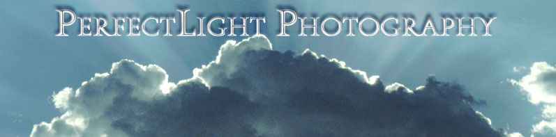 PerfectLight Photography